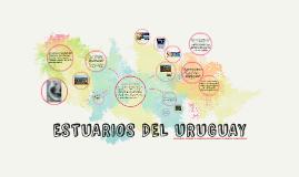 Copy of ESTUARIOS DEL URUGUAY