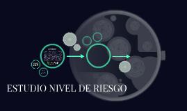 ESTUDIO NIVEL DE RIESGO