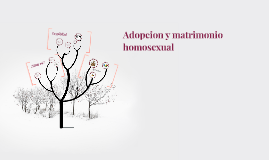 Adopcion y matrimonio homosexual