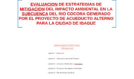 EVALUACION DE ESTRATEGIAS DE MITIGACION DEL IMPACTO AMBIENTA