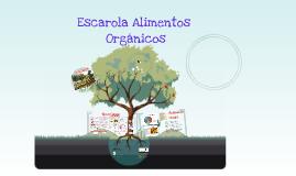 Copy of Copy of Modelo de negocios Escarola Orgánicos - Mayo 2015