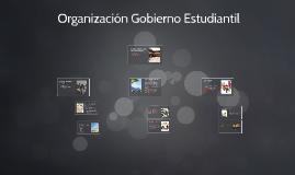 Organización Gobierno Estudiantil