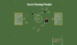 Exercise Physiology Principles
