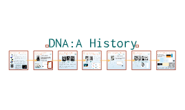 Molecular Genetics 1:  DNA Introduction
