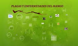 Copy of PLAGAS Y ENFERMEDADES DEL MANGO