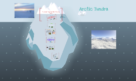 The Arctic Tundra By: Edith, Kate, and Logan