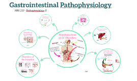 Gastrointestinal Pathophysiology