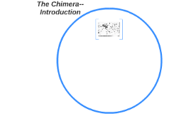The Chimera--Introduction