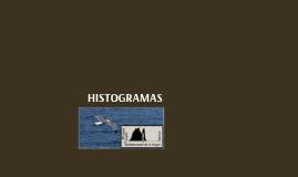 El Histograma