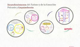 Neurofenómenos del Ánimo y de la Emoción