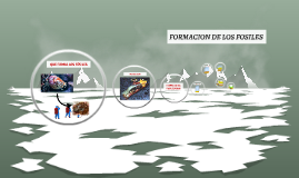 FORMACION DE LOS FOSILES