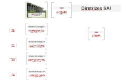 Copy of Diretrizes SAI