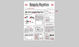 Monopolos Magnéticos