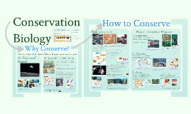 Interactions 7: Conservation Biology