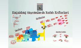 Copy of Küçükbaş Hayvanlarda Refah Kriterleri