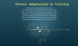 Chronic Training Adaptations