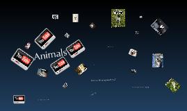 Animals:Awsome Animals