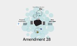 Amendment 28
