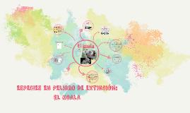 ESPECIES E N PELIGRO DE EXTINCIÓN: EL KOALA