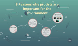 3 Reasons why protists are important for the enviroment