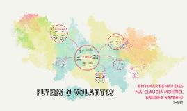 FLYERS O VOLANTES