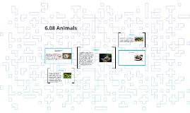 6.08 Animals