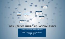 RESULTADOS GRUPOS FUNCIONALES N°1