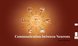 Hyb Communication between Neurons