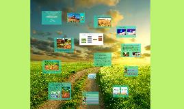 Cosecha y cultivos de cobertura