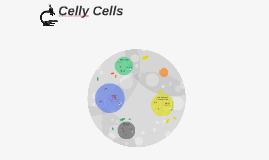 Celly Cells