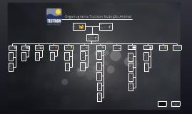 Copy of Organograma Tectron - Administrativo