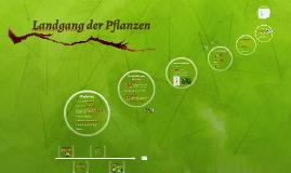 Landgang der Pflanzen