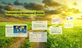 temperate grassland biome by abby on prezi