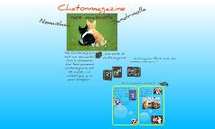 Chatonmagazine