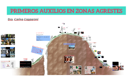 Copy of PRIMEROS AUXILIOS EN ZONAS AGRESTES