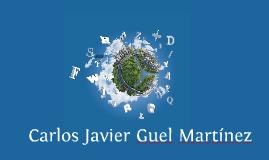 Resume: Carlos Javier Guel Martínez