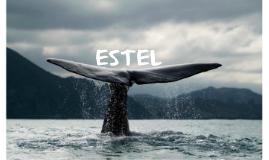 Copy of ESTEL