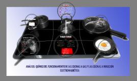 Copy of Cocina de Induccion
