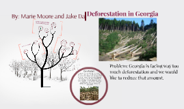 Deforetation in Georgia