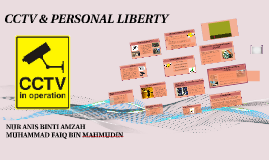 Copy of Copy of CCTV & PERSONAL LIBERTY