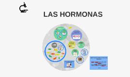 Copy of Copy of HORMONAS