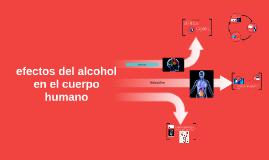 efectos del alcohol en el cuerpo humano