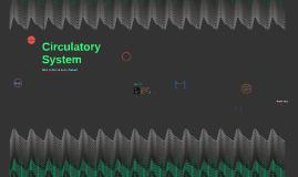 Cirulatory System