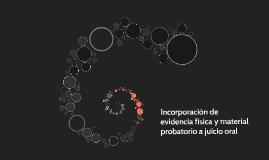 Incorporación de evidencia física y material probatorio a ju