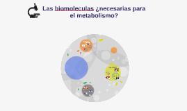 Las biomoleculas ¿necesarias para el metabolismo?