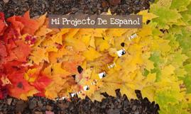 Mi Projecto De Español