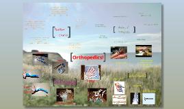 Senior Project 2012