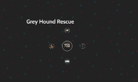 Grey Hound Rescue