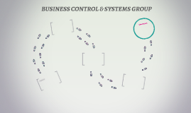 BUSINESS CONTROL & SYSTEMS GROUP