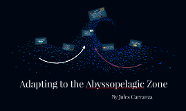 Adapting to the Abyssopelagic Zone